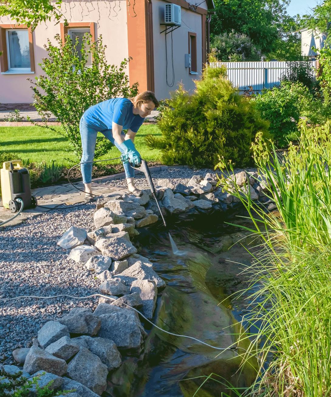 Teichpflege im Frühjahr