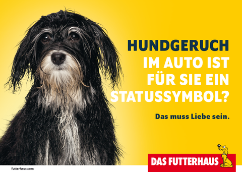 Hundegeruch im Auto ist für Sie ein Statussymbol?