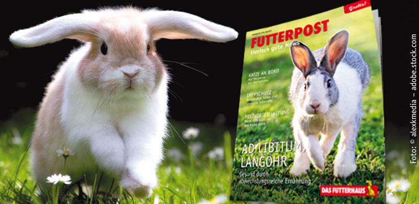 FUTTERPOST Kundenmagazin