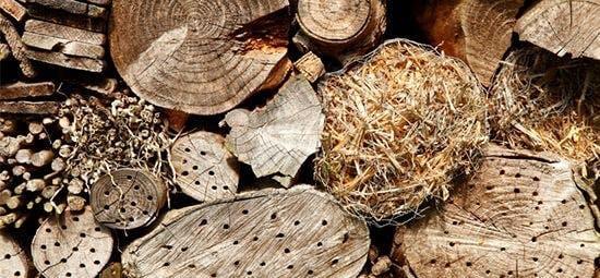 Holzstämme als Insektenhotel