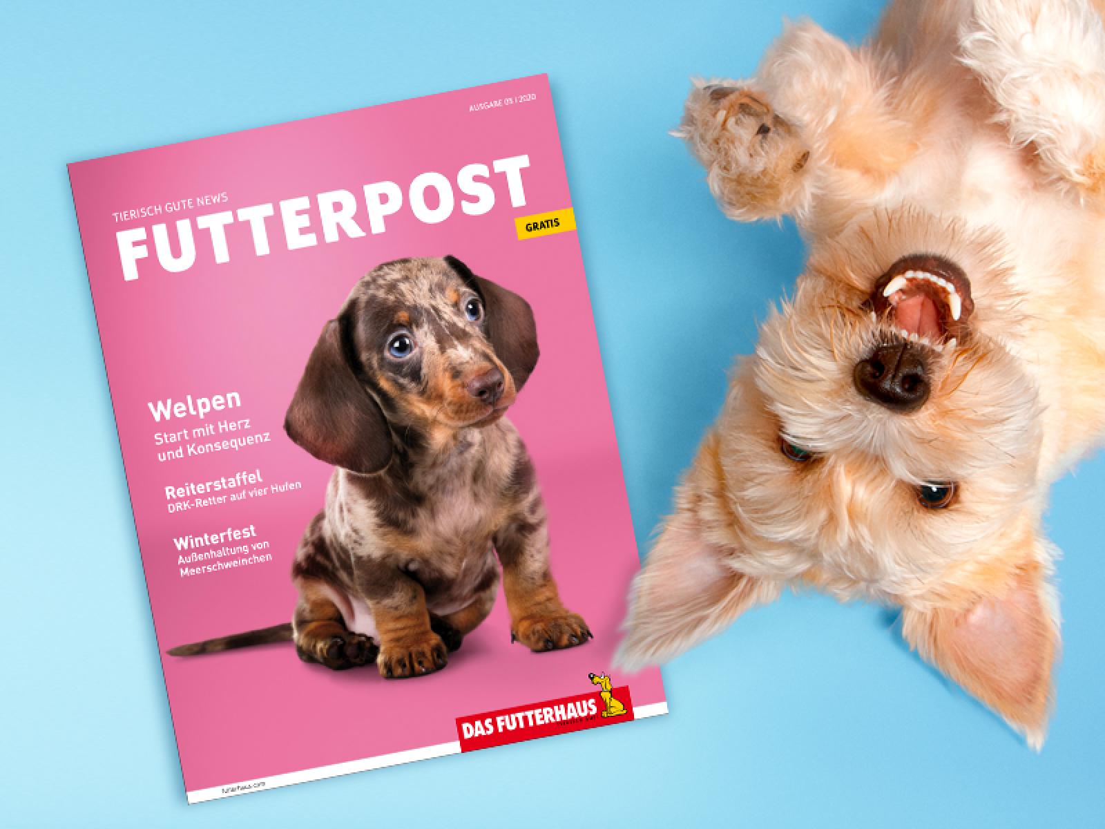 DAS FUTTERHAUS-FUTTERPOST