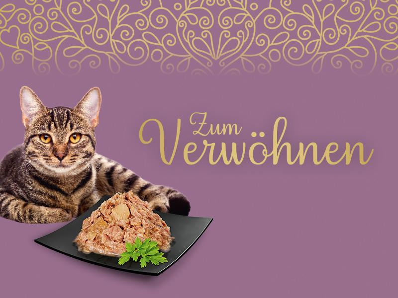 Zum Verwöhnen Premium Nahrung Katzen