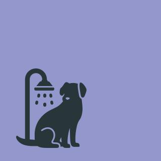 Hundewaschstation