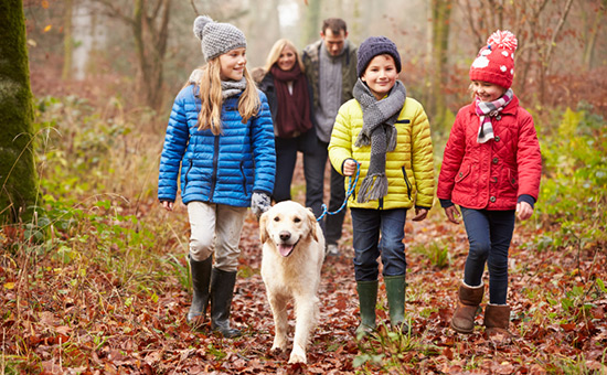 Ausflug mit Kind und Hund