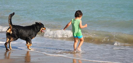 Kind und Hund spielen am Strand