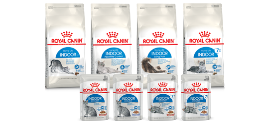 [Translate to Österreich:] ROYAL CANIN Feline Health Nutrition Indoor bei Das Futterhaus