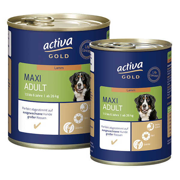 activa gold Hund Nassnahrung Maxi Adult Lamm