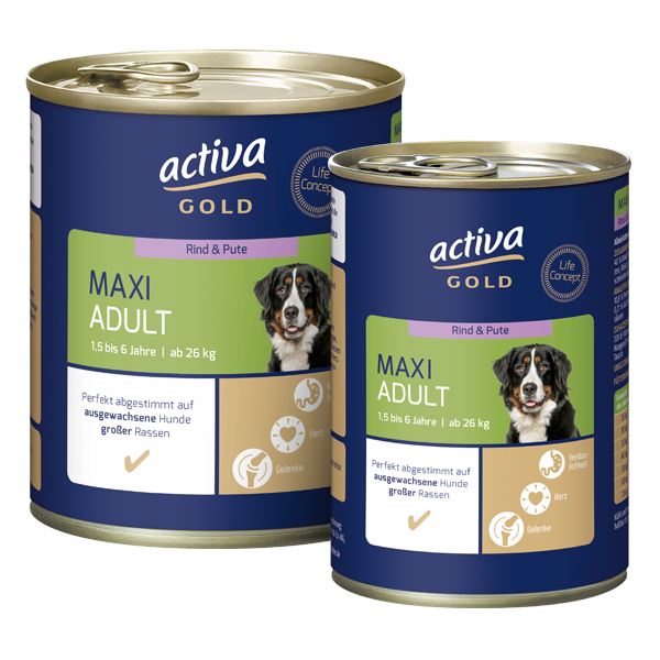 activa Gold Hund Nassnahrung Maxi Adult Rind Pute