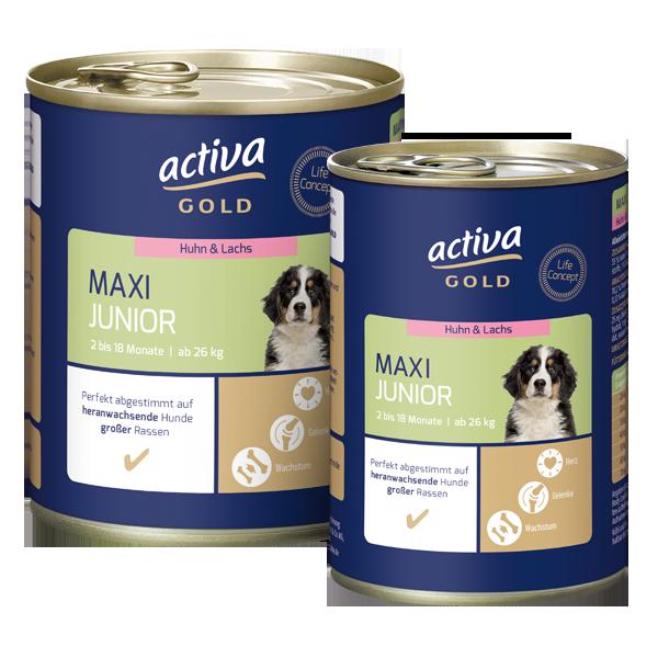 Activa Gold Hund Nassnahrung Maxi Junior Huhn Lachs