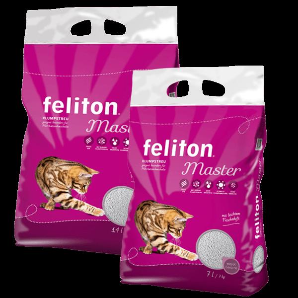 feliton Master
