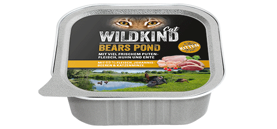 WILDKIND Cat BEARS POND Kitten Kalb und Huhn